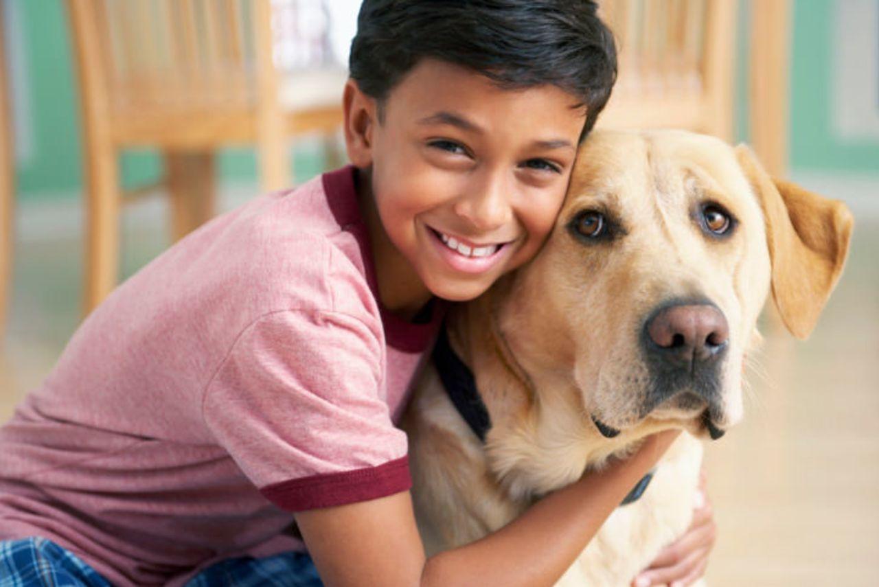 Do dogs go to heaven? | Bibleinfo com