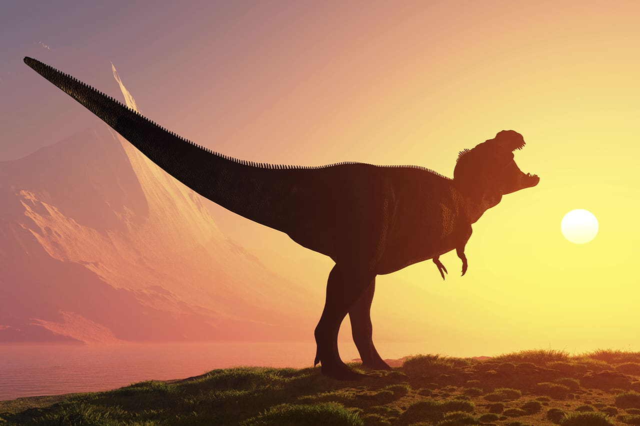 What does the Bible say about dinosaurs? | Bibleinfo com