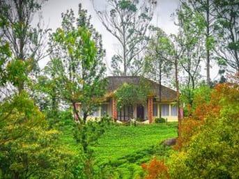 VRP Tea Plantation Bungalow