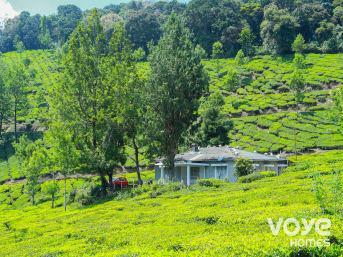 TML Tea Plantation Cottage