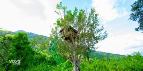 Tree House Munnar