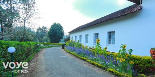 Honeymoon Resorts in Munnar
