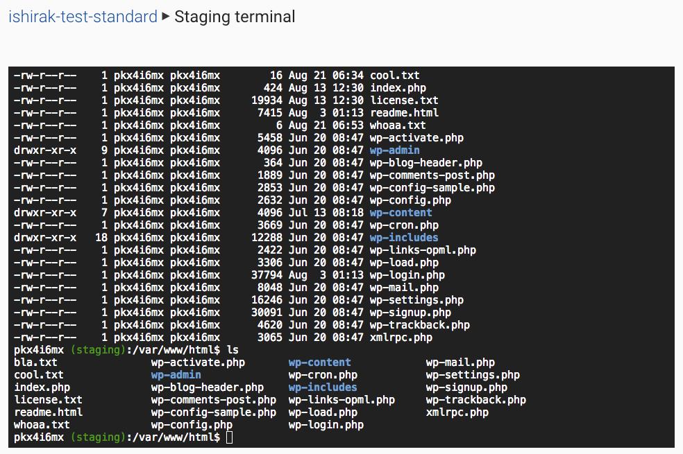 Web terminal · Docs · VersionPress
