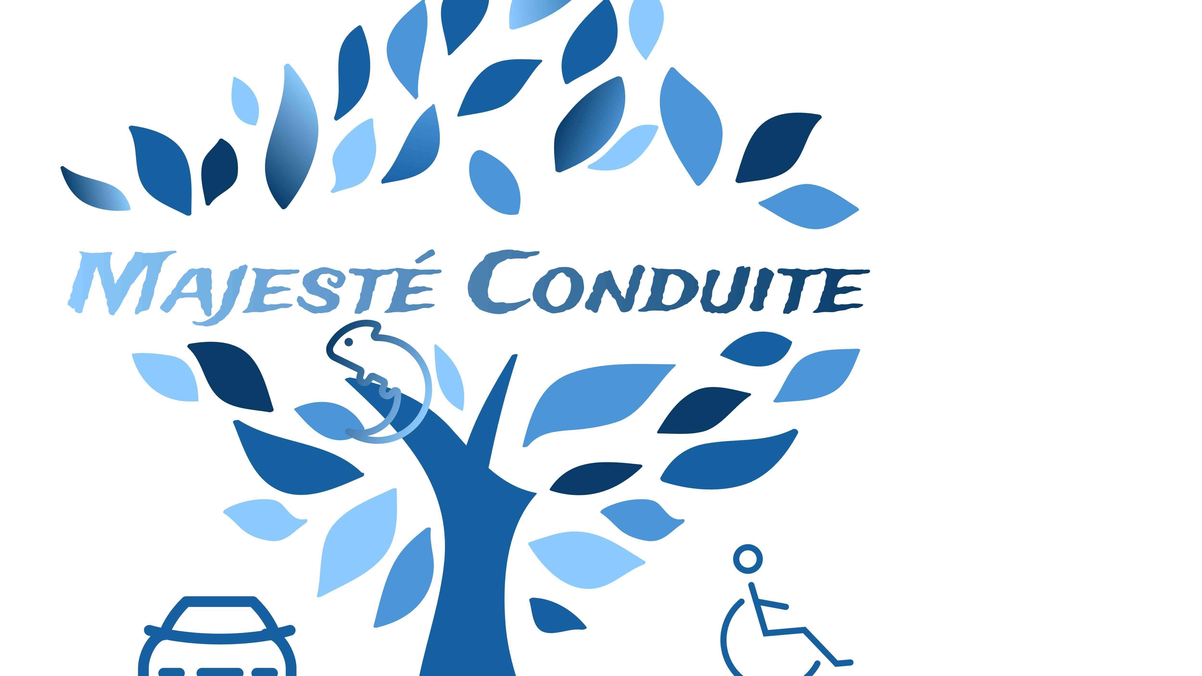Majesté Conduite Handi Caméléon - Brunoy