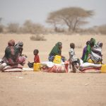Sustainable Development in Humanitarian Action