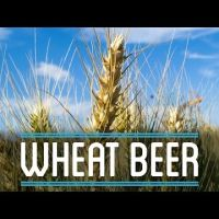 brew wheat beer