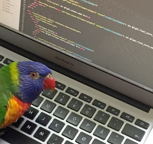 Que linguagem é melhor para aprender a programar?