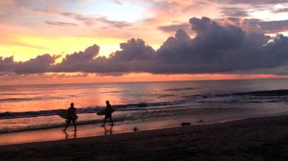 Get a taste of Canggu, Bali