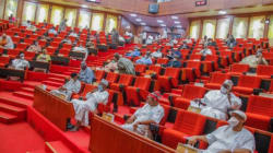 Bandits killings: NSA must deploy more troops to affected areas now – Senate