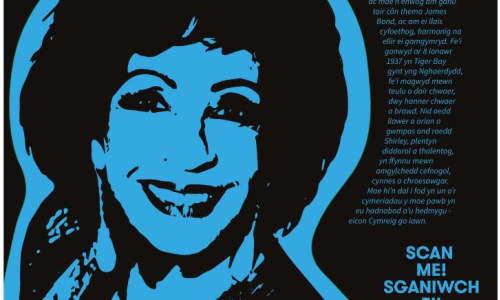 Local Welsh singer, Dame Shirley Bassey is just one of the iconic Black heroes you can see in the exhibition.