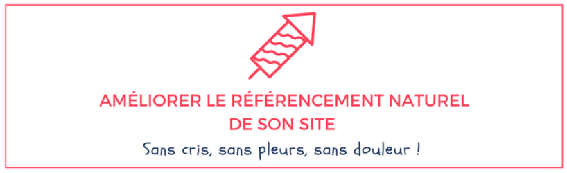 ameliorer-le-referencement-naturel-de-son-site.png