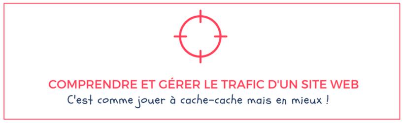 comprendre-et-gerer-le-trafic-d-un-site-web.png