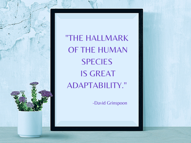Adaptability Is Key To Success