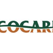 Cocari