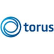Torus Finance Consult