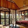 Honeymoon Suite in the Jungle