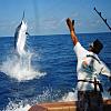 Deep Sea Fishing!!