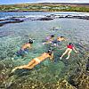 Discover Lanai Snorkel Tour