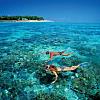 Shark and Stingray  Snorkel Trip