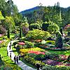 Buchert Gardens