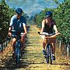 Wine tasting by bicycle
