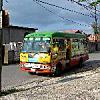 Bob Marley One Love Bus Crawl