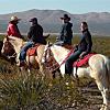 Horseback Tour of Organ Mountain Trails