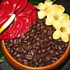Kona Coffee Tour