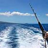 Activity:  Deep Sea Fishing