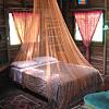 1 Night's Stay @ Beachfront Treehouse on Mango Tree