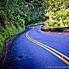 Road to Hana: Fill the gas tank
