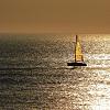 Boat Rental/Island Tour