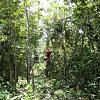 Selva Maya Eco Adventure