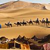 Erg Chebbi Camel Trek
