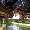 Exeter River Lodge Safari