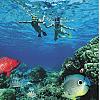 Maui Snorkeling Tour