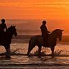 a 2-hour horseback ride