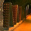 Cave Tour & Wine Tasting @ Schramsberg Vineyards