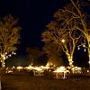 Candlelit dinner for 2 - Safari Lodge