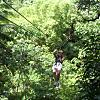 St. Lucia Treetop Zip Trip