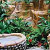 Peace Lodge & La Paz Waterfall Gardens Stay