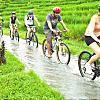 Bali Cycling Tour