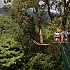Zipline Canopy Safari