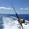 Deep Sea Fishin'