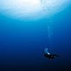 Maui Scuba Diving Adventure