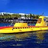 Shore Excursion - Submarine Adventure