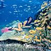 Aruba Bob Snorkeling Tour