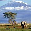 Hiking Mt. Kilimanjaro