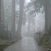 Temple Stay in Mount Koya