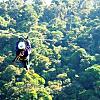 Canopy Vista Tour